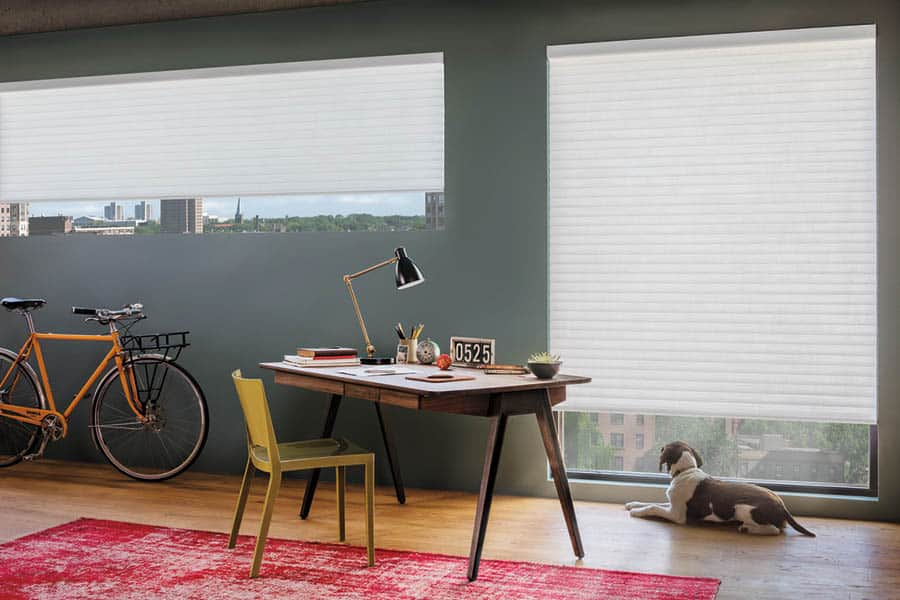 Choosing the Right Window Treatments for Homes Near Bethesda, Maryland (MD) like Custom Shades for Offices
