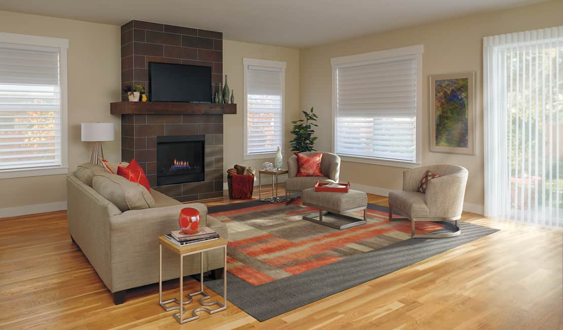 Great Window Fashions for Natural Light in Homes in Alexandria, Virginia (VA) like Silhouette Shades
